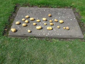 Kartoffeln auf dem Grab von Friedrich dem Großen. - Foto: (c) Gabriele Meisner